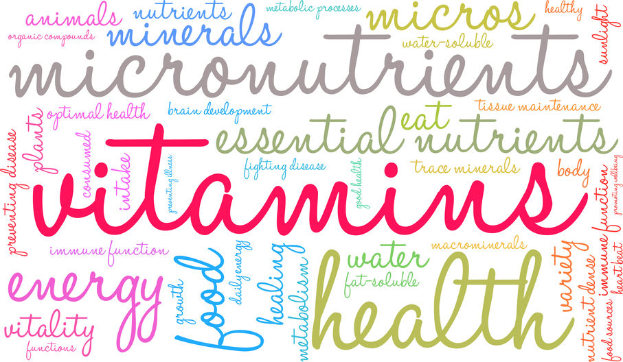 Best Foods for Your Immune System and to Boost your Brain