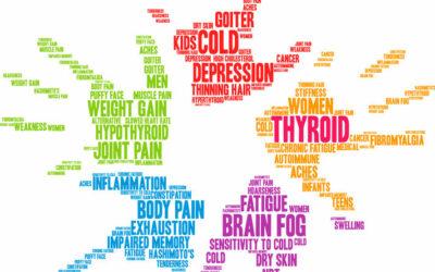 Hormones, Your Brain and Weight